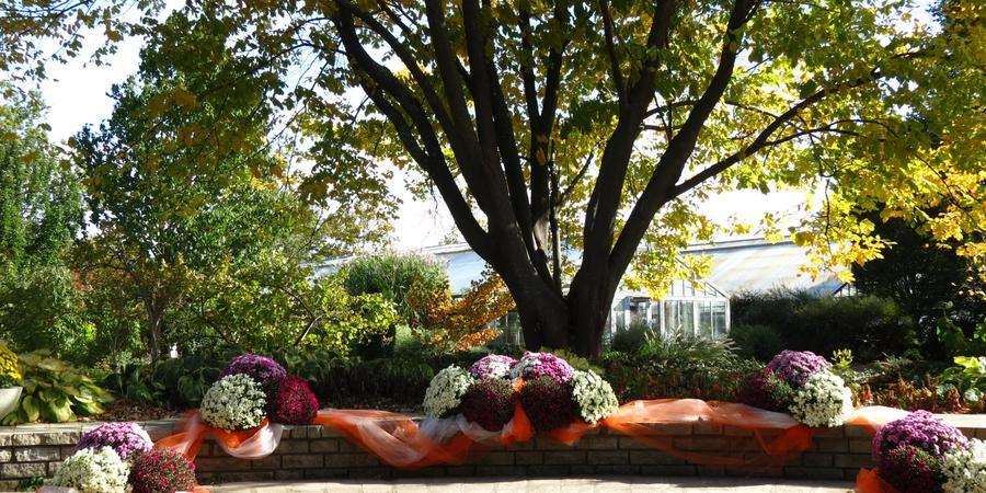 Luthy Botanical Garden wedding Central Illinois