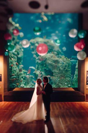 South Carolina Aquarium wedding Charleston