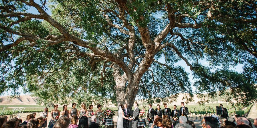 Cass Winery & Vineyard wedding Central Coast