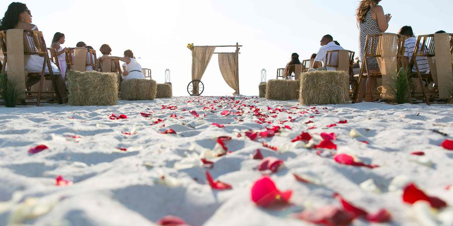 Gulf Beach Weddings wedding Tampa