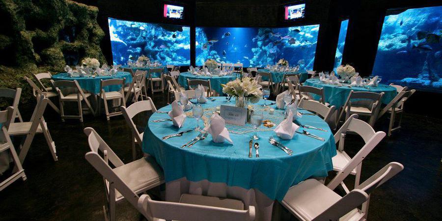 Oklahoma Aquarium wedding Tulsa