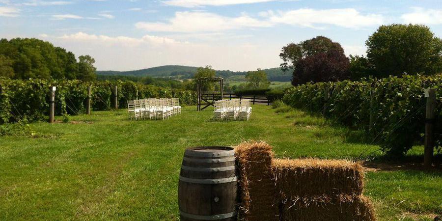 Chrysalis Vineyards wedding Northern Virginia