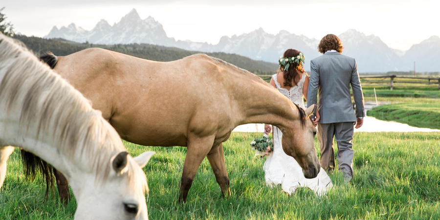 Diamond Cross Ranch wedding Wyoming
