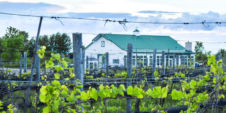 Ledgestone Vineyards Venue Greenleaf Get Your Price