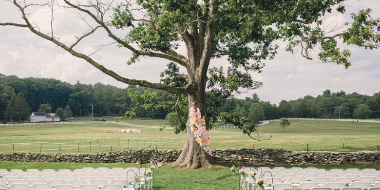 Friedman Farms wedding Lehigh Valley/Poconos