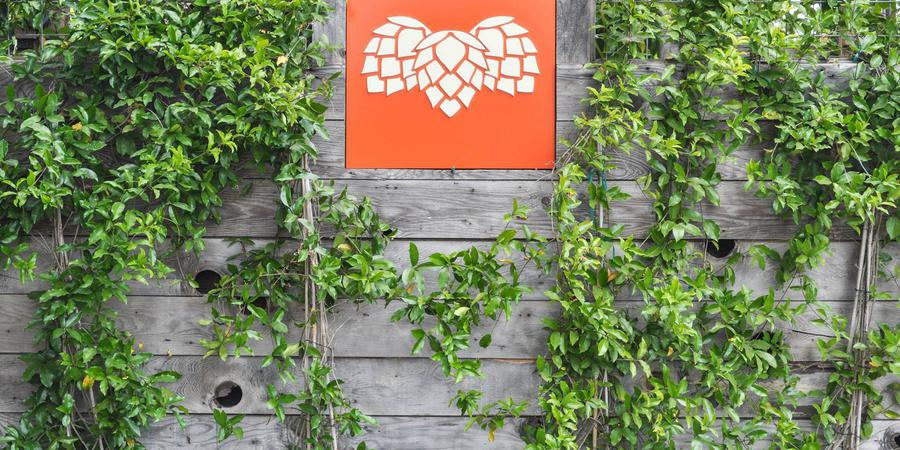 Hopmonk Tavern Sonoma wedding Napa/Sonoma