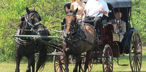 Minnesota Harvest Apple Orchard wedding Minnesota