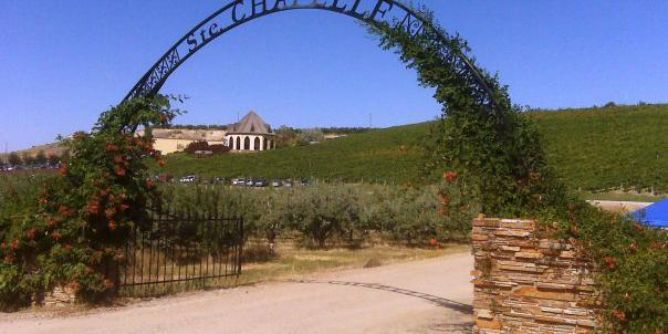 Ste. Chapelle Winery wedding Idaho