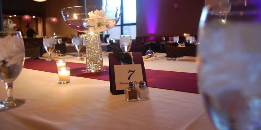 Cityscape by Millennium Events wedding Kalamazoo