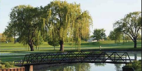 Arlington Lakes Golf Club wedding Chicago