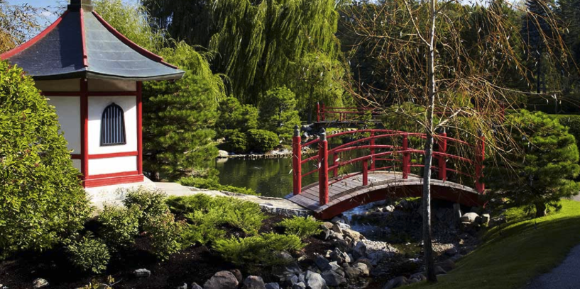 Normandale Japanese Garden wedding Minnesota
