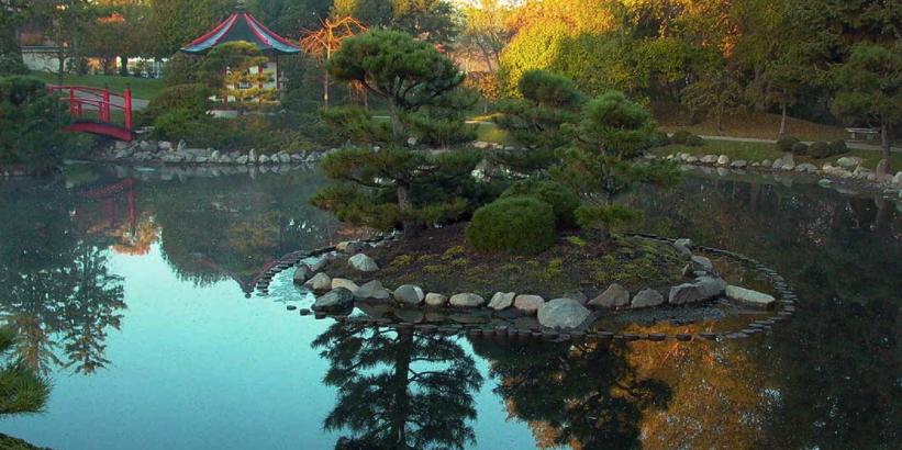 Normandale Japanese Garden wedding Minnesota
