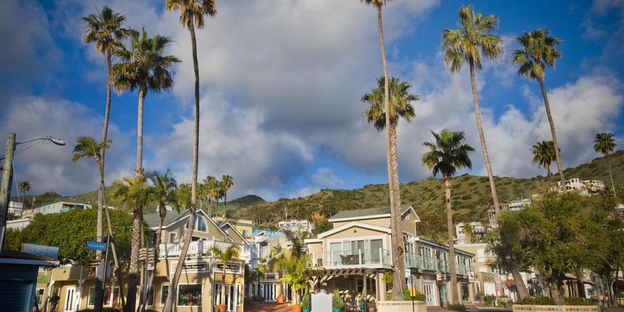 Hotel Metropole Beach House wedding Catalina Island