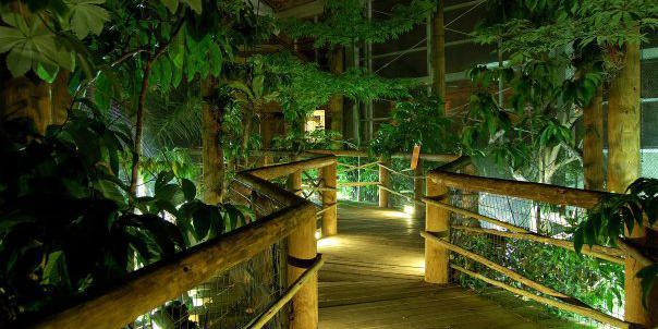 Mesker Park Zoo & Botanic Garden wedding Southern Indiana