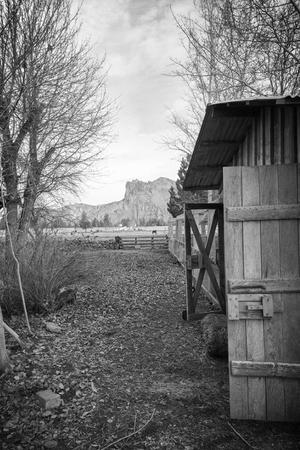 DD Ranch wedding Willamette Valley
