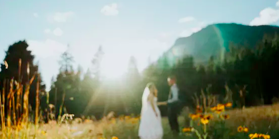 Demigod Mountain View Chateau wedding Seattle