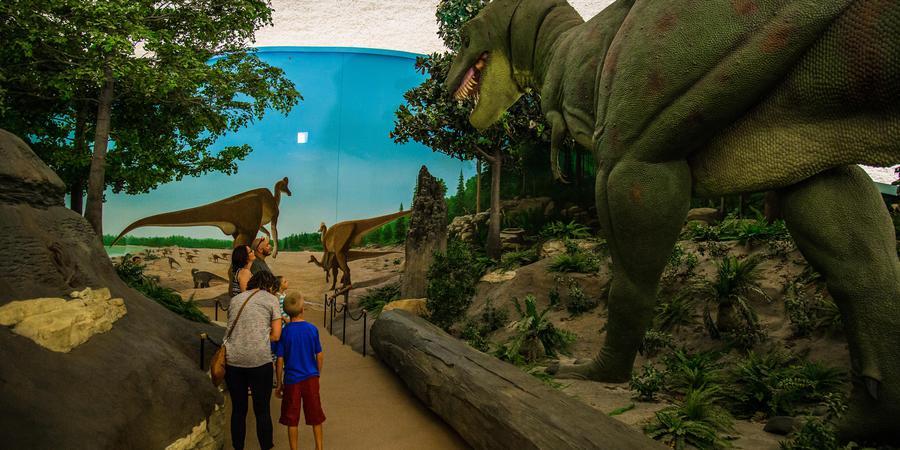 Sternberg Museum Of Natural History wedding Kansas City