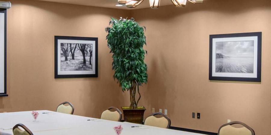 Holiday Inn and Suites Oklahoma City Airport wedding Oklahoma City
