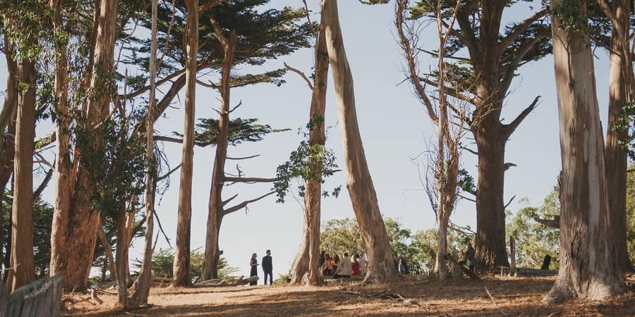 Straus Home Ranch wedding San Francisco