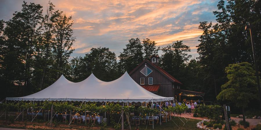 Forty-Five North Vineyard and Winery wedding Traverse City
