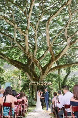 Waimea Valley wedding Oahu