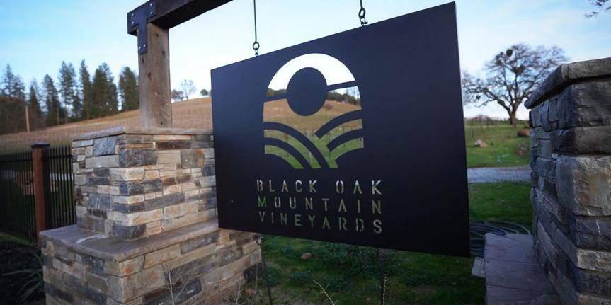 Black Oak Mountain Vineyards wedding Sacramento