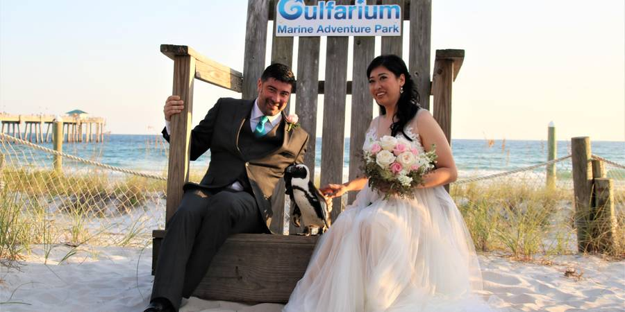 Gulfarium Marine Adventure Park wedding Northwest Florida