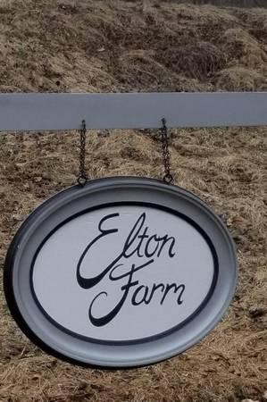 Elton Farm wedding Baltimore