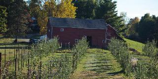 Rustic Orchard Barn wedding Westchester/Hudson Valley