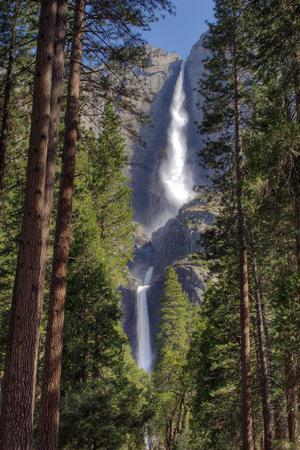 The Ahwahnee Hotel wedding Yosemite