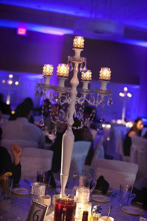 Holiday Inn & Suites, East Peoria wedding Central Illinois