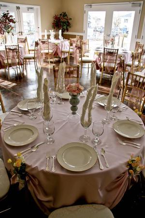 Arts for All Nevada at the Lake Mansion wedding Reno