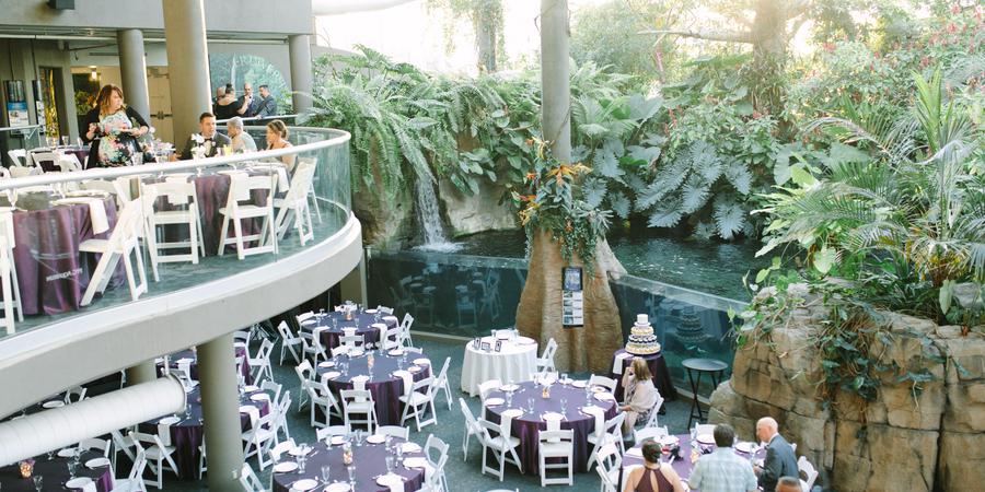 Pittsburgh Zoo and PPG Aquarium wedding Pittsburgh