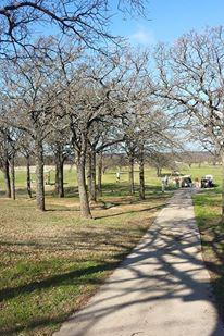 Nocona Hills Country Club wedding Dallas