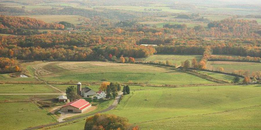 Horizon View Farm wedding Central PA