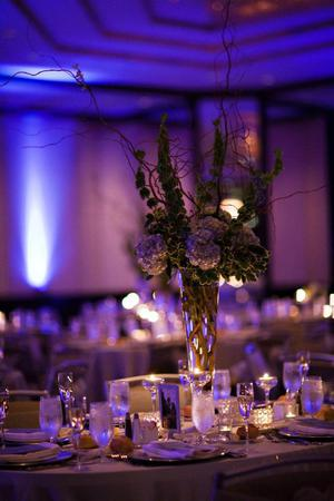 The Westin Convention Center, Pittsburgh wedding Pittsburgh