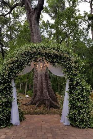 Saxon Manor: Garden Room wedding Tampa