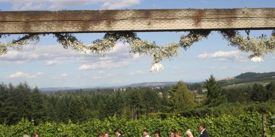 A Blooming Hill Vineyard and Winery wedding Portland