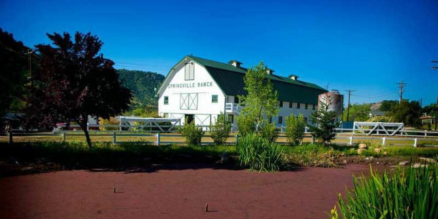 Springville Ranch wedding Central Valley