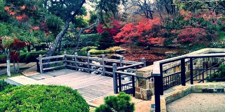 Fort Worth Botanic Garden Venue