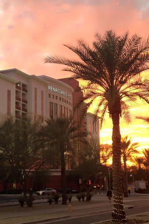 Renaissance Glendale Hotel & Spa wedding Phoenix/Scottsdale