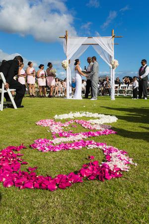Paradise Landing at Maui Dragon Fruit Farm wedding Maui