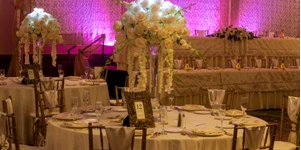 Doubletree by Hilton Pittsburgh - Green Tree wedding Pittsburgh