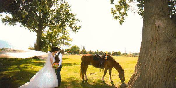 Corley Ranch wedding Lake Tahoe