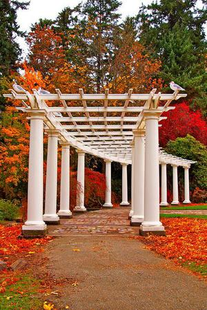 Wapato Park Pavilion wedding Tacoma