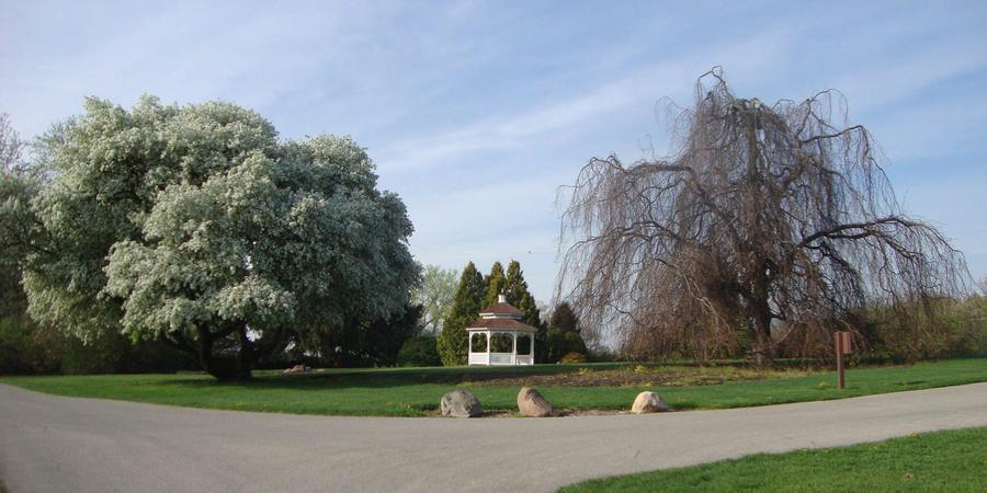 Hidden Lake Gardens wedding Ann Arbor