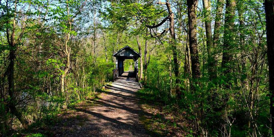 The Rookery, Geauga Park District wedding Cleveland