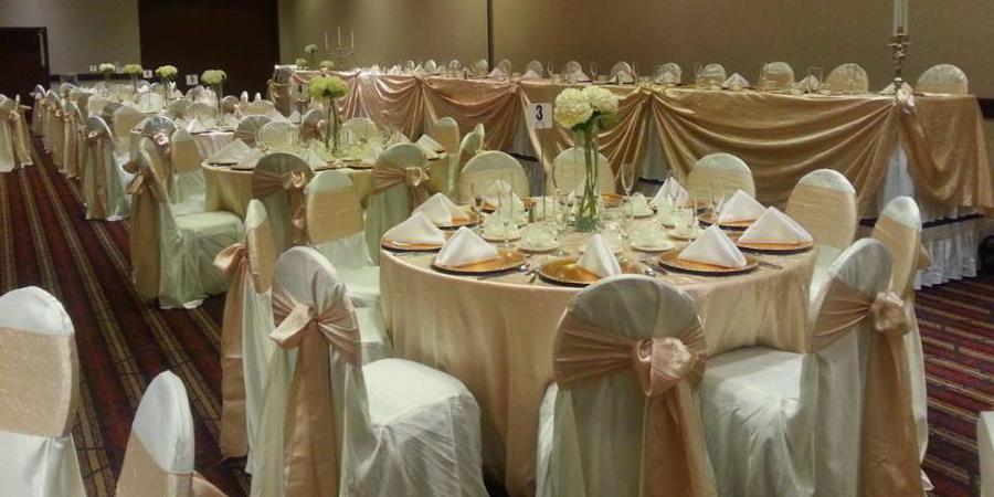 Wyndham Garden Sterling Heights wedding Detroit