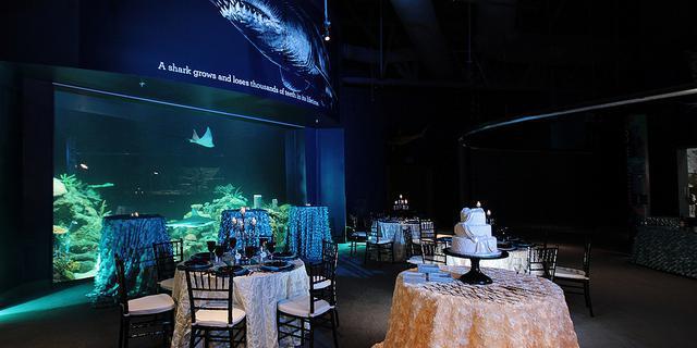 Greensboro Science Center wedding Greensboro/Triad