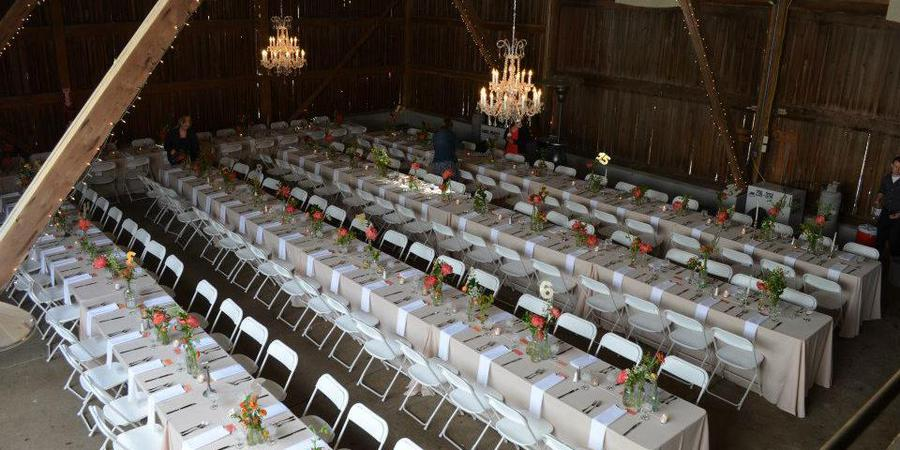 The Willow Tree wedding Dayton